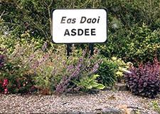 Asdee Community Planning